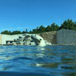 Loomaaed pakub unistuste tööd jääkarusõbrale