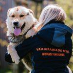 Head rahvusvahelist koertepäeva!