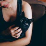 Musta kassi kuul on uue kodu leidnud juba 40 kassi